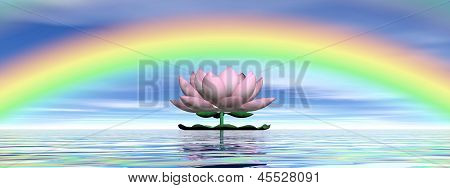 Lotus Flower Under Rainbow - 3D Render