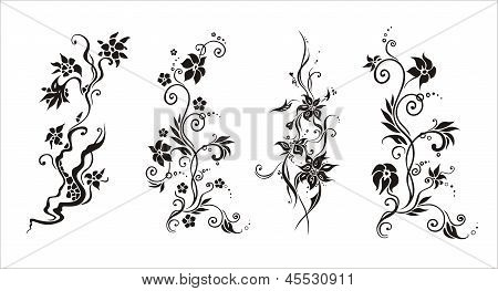 graphic vector  abstract  flower ornament