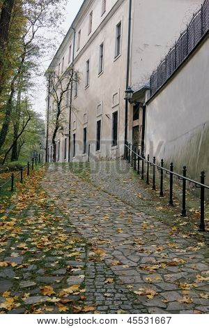 Autumn Path In Krakow