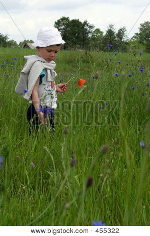 Boy In Nature