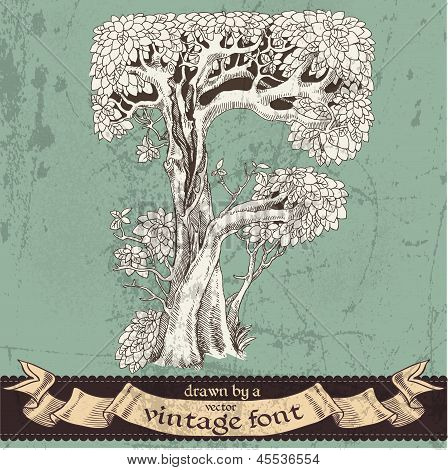 Magic grunge forest hand drawn by a vintage font - F