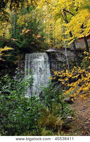 Autumn Yellow At Hungarian Falls