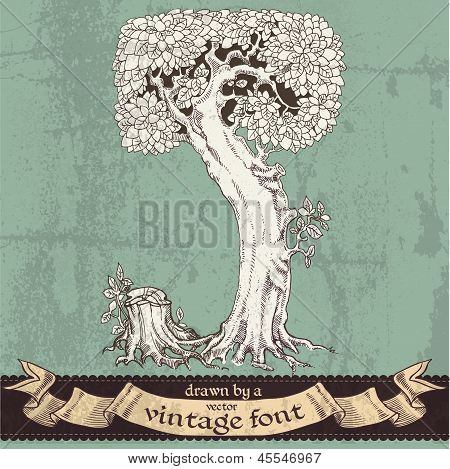Magic grunge forest hand drawn by a vintage font - J