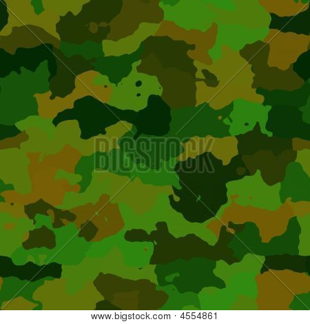 Camouflage Pattern Texture