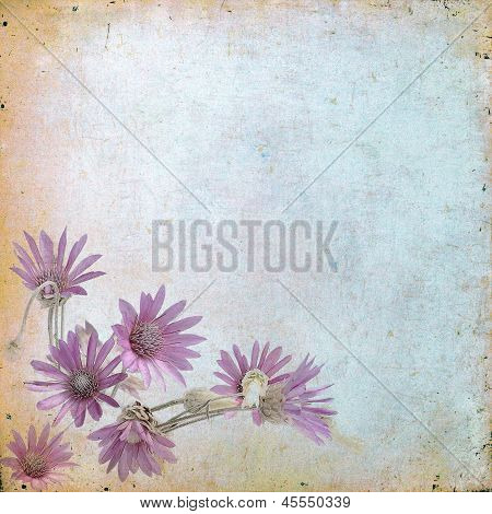Vintage Floral Background With Grass And Flowers On A Brown Background Old Paper Grunge, For Any O