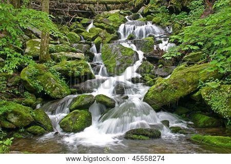 Noisy Falls