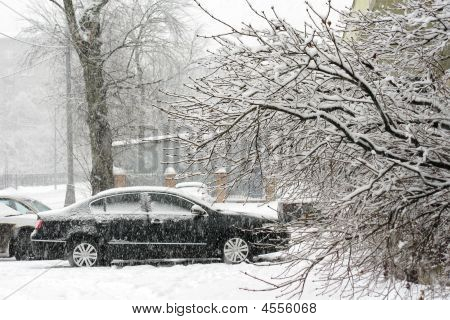 Car,snowfalli,two
