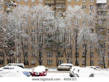 Street,snowfalli,two