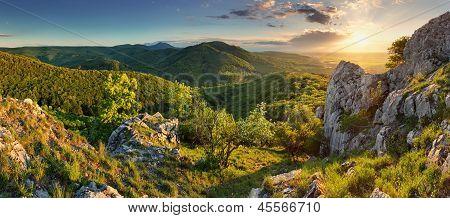 Mountain Forest Panorama - Slovakia