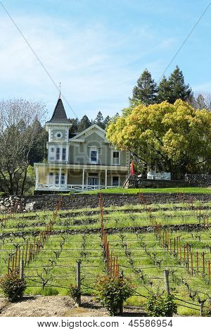 St. Clement Vineyards in Napa Valley