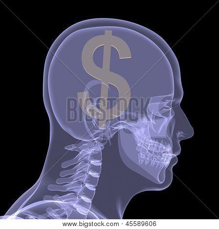 Gold dollar in head
