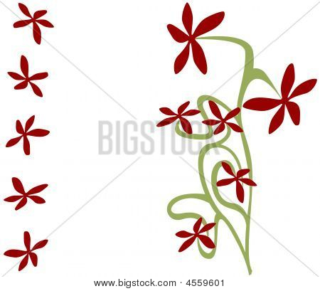 Oriental Wild Flowers