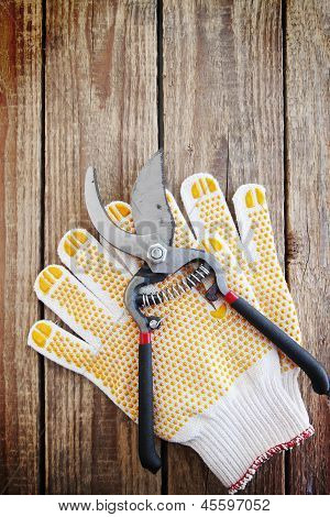 Gardening Gloves And Secateurs