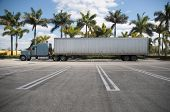 Parked Semi With Tropical Background