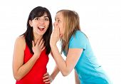 stock photo of mimicry  - Young brumette whispering the news to her friend - JPG