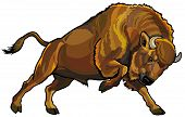 image of herbivore animal  - wisent european bison - JPG