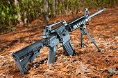stock photo of pine-needle  - Semi automatic black rifle on a pine needle and forest background - JPG