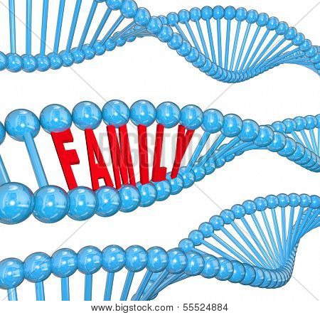 Family Word DNA Heredity Traits Genetics
