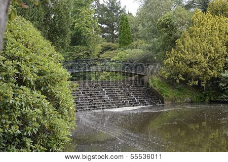 Waterfall And Bridge In Country Garden