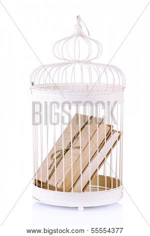 Books in decorative cage, isolated on white