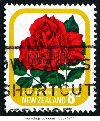Postage Stamp New Zealand 1976 Josephine Bruce, Rose Flower