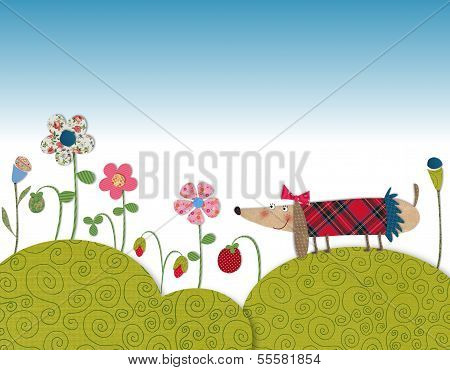 Little dog walking on flowering meadow