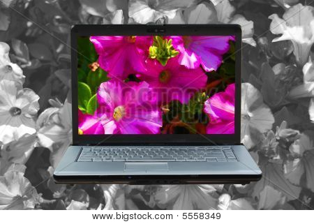 Laptop Flowers