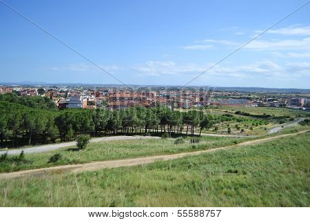 Summer Landscape Near Figueres