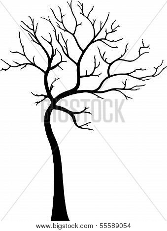 Decorative Tree Without Leaves