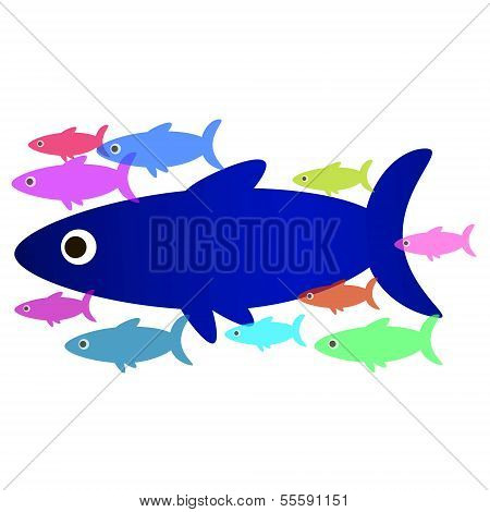 Flock of sea fish