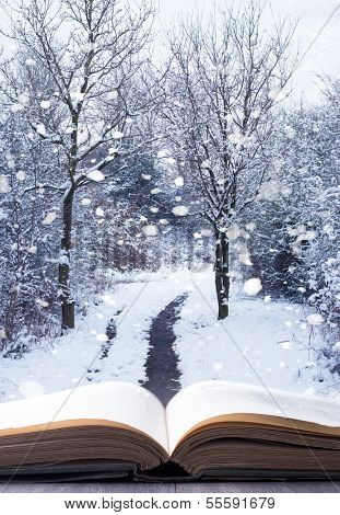 Open book with winter woodland background and falling snow