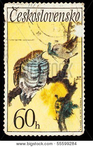 CZECHOSLOVAKIA - CIRCA 1972: A Stamp printed in CZECHOSLOVAKIA,