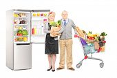 Full length portrait of a man and woman holding a paper bag and shopping cart full of groceries, wit