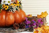 Beautiful autumn composition in pumpkin with bumps and decorative box on table on wooden background