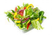 stock photo of romaine lettuce  - fresh healthy vegetable salad - JPG