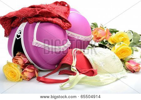 Female small suitcase for storing lingerie and rose flowers in still life