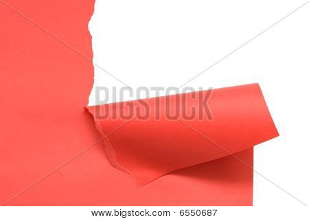 Disrupt Red Paper
