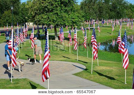 Walking Through the Flags
