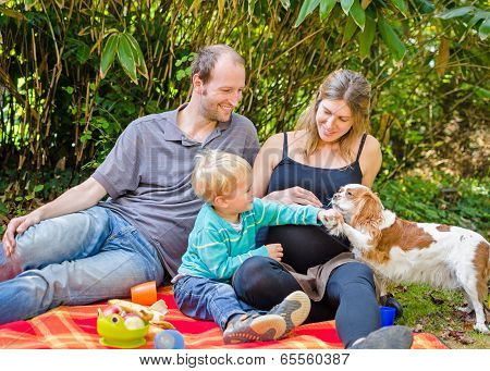 Happy Family With Their Pregnant Mother Having Picnic In Park