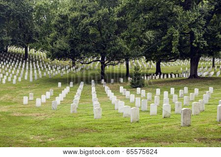 Headstones At The Arlington National Cemetery
