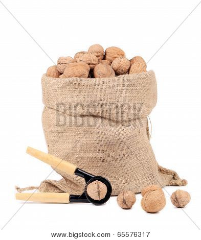 Walnuts in burlap bag