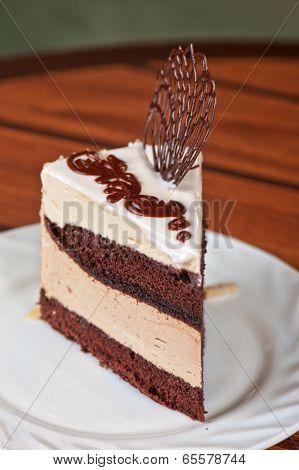 tasty piece of chocolate cake closeup