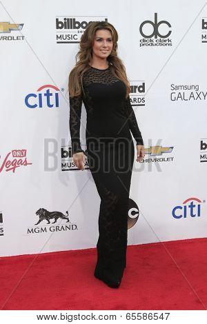 LAS VEGAS - MAY 18:  Shania Twain at the 2014 Billboard Awards at MGM Grand Garden Arena on May 18, 2014 in Las Vegas, NV