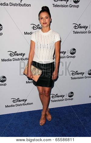 LOS ANGELES - MAY 19:  Hannah Ware at the Disney Media Networks International Upfronts at Walt Disney Studios on May 19, 2013 in Burbank, CA