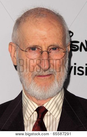 LOS ANGELES - MAY 19:  James Cromwell at the Disney Media Networks International Upfronts at Walt Disney Studios on May 19, 2013 in Burbank, CA