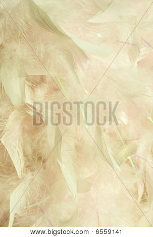 Fluffy Peaches And Cream Feather Background