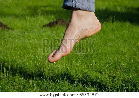 Dewy Water Drops On Wet Foot In Morning Meadow