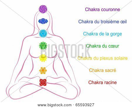 Chakras Woman Description French
