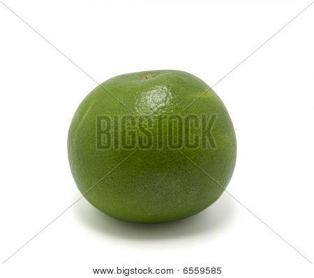 Citrus Sweetie (oroblanco)
