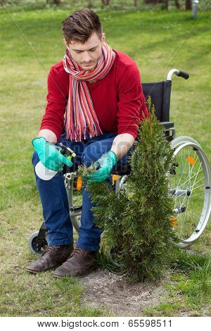Disabled Working In A Garden